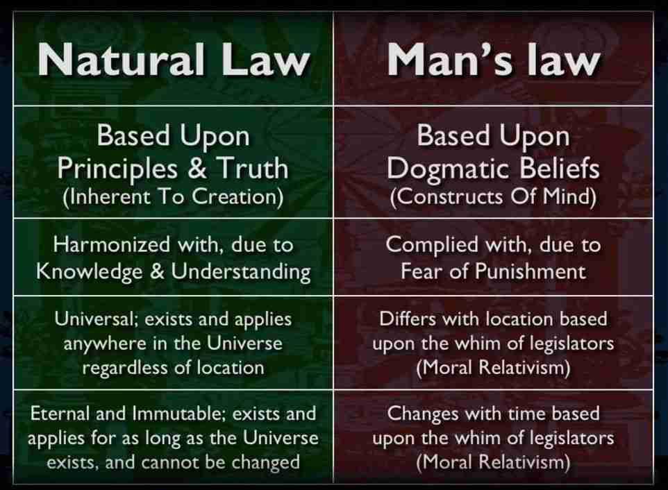 Брэдли Любящий КРАЙНЯЯ КОРРУПЦИЯ В АМЕРИКЕ Natural-Law